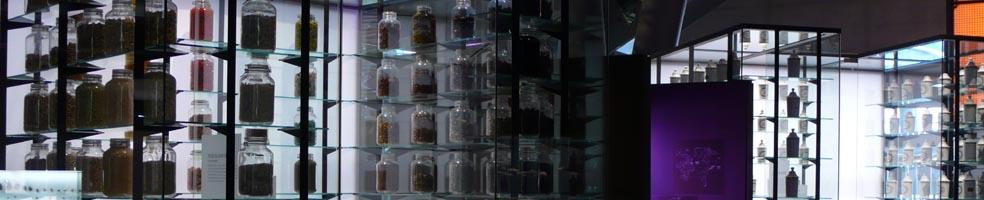 Biodiversidad – Cosmo Caixa BCN (ITINERANTE)